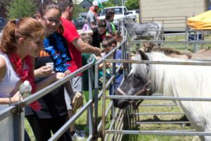 teens and kids at petting zoo at 3rd annual community celebration