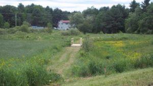 Walking Path in field
